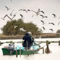 Qualificare i luoghi della pesca. Un progetto coordinato per l'area costiera dell'Emila Romagna