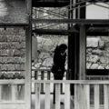 AIA|LA Architectural Photography Awards 2019. Lo scatto di Paola Maini porta l'Italia tra i vincitori