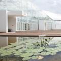 Le nuove serre high tech dell'orto botanico di Padova