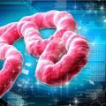 Un'unità di cura per l'ebola: concorso della UIA Public Health Group