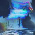 La fascinazione dell'immagine in movimento