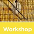 Workshop su un nuovo sistema di isolamento termo-acustico