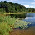 Autorizzazione paesaggistica: in via di definizione il Dpr che amplia gli interventi di «lieve entità»
