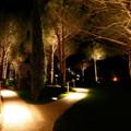 Progettare la luce con Paolo De Lucchi