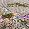 Smart Cities e tecnologie urbane: ne parla Carlo Ratti