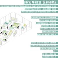 Agricoltura urbana, al via un corso a Milano