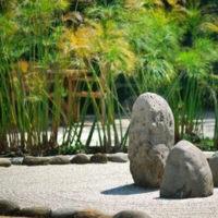 Lo studio della geobiologia e del feng shui
