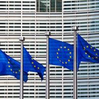 Erasmus for Young Entrepreneurs: il programma europeo coinvolge i giovani professionisti