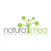 Il Verde Pensile protagonista del corso di progettazione di Natura Mea