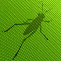 A Lucca si insegnano i segreti della modellazione parametrica con Grasshopper