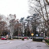 Rivitalizzare piazza Campo del Palio ad Asti