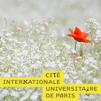 Giardini del mondo in movimento: creazioni effimere nei giardini della città universitaria di Parigi