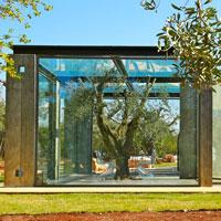 Un cubo di vetro tra ulivi e trulli secolari. Il progetto di Enrico Maria Cicchetti nella campagna di Ostuni