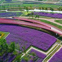 NaTian Cup International Design Competition. Un'identità ecologista per la città di Suqian