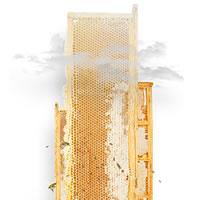 Skyhive Skyscraper Challenge: le più recenti tecnologie per reinventare il concetto di grattacielo