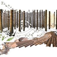 Miralles Tagliabue EMBT vince il concorso Artenoah per la costruzione di un centro di biodiverisità a Rehau