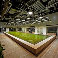 Vertical and urban farming. Agricoltura urbana e nuove opportunità professionali