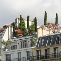 """Incentivi per tetti verdi: l'Italia segue le best practice estere ma mancano convinte politiche """"green"""""""