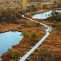 Great Kemeri Bog Visitor Center. Un landmark iconico per il centro visitatori del parco lettone