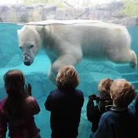 Coexist Rethinking Zoos: ripensare lo zoo di Barcellona
