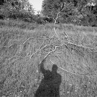 Vittore Fossati. Il Tanaro a Masio: a Torino uno tra i protagonisti italiani della fotografia del paesaggio