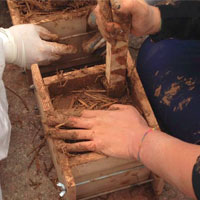 Full Immersion nella Terra: workshop in Sardegna sul restauro delle case in terra cruda