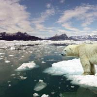 #017 Global Warming Center: un centro di ricerca per due persone tra i ghiacci dell'Artide