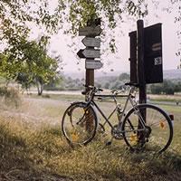 Musica nel vento. Un logo per il primo itinerario ciclo-musicale italiano che attraverserà la pianura lombarda