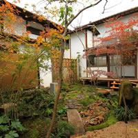 Ordinata casualità. Progetti e piante nel giardino giapponese
