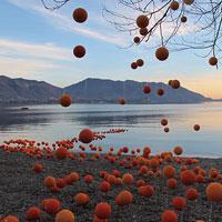 OrangeArancio 2019: un'installazione temporanea sulle rive del lago Maggiore