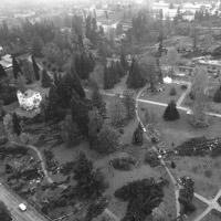 Parco delle Terme di Levico. Installazioni ispirate alla resilienza per far rinascere il paesaggio dopo la tempesta del 2018