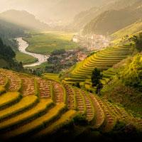 Rural Tourism Accommodation. Tra le risaie vietnamite un'architettura per viaggiatori in cerca di pace e bellezza