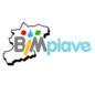 Un logo per la Piave