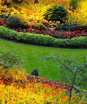 Master in Garden Design a Milano | 96 ore di lezioni, Project work e Stage aziendale